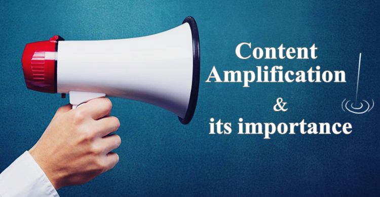 Content Amplification Importance